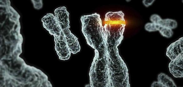 Diagnosi pre-impianto: nuova chance o ritorno all'eugenetica?