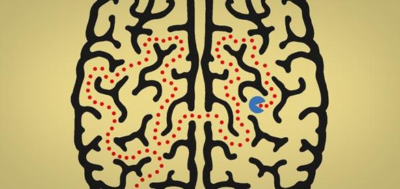 """Il Libro """"Filosofia delle neuroscienze"""""""