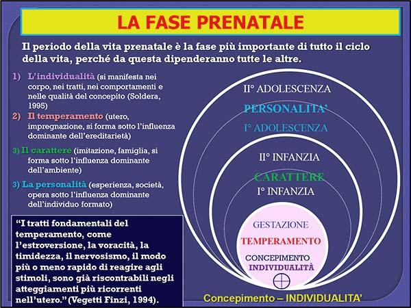 21_vita_prenatale_fase-prenatale