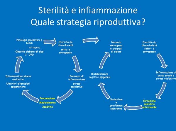 21_vita_prenatale_schema-sterilita-infiammazione