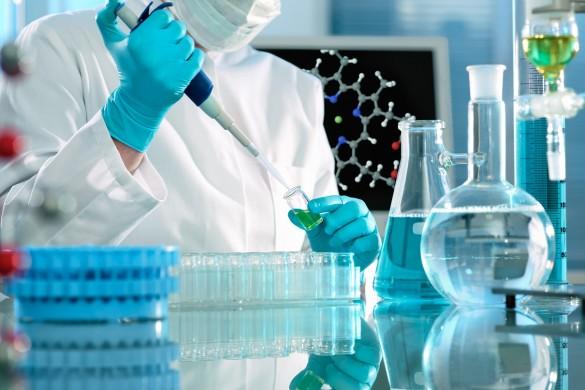 Sperimentazioni sugli animali. Senatori e ricercatori insieme per sostenere la ricerca: «Impedire di utilizzarli blocca la scienza»