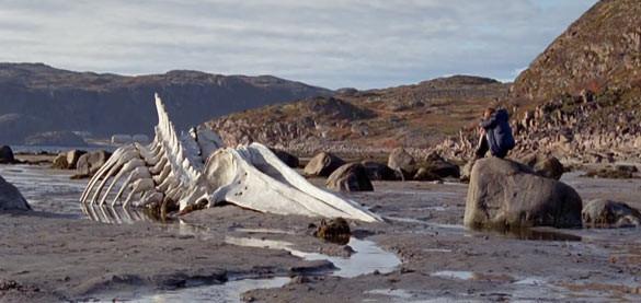 Il Film «Leviathan» di Zvyagintsev A.