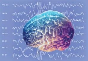 Cervello-in-comunicazione