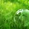 ecologia e ambiente_banner