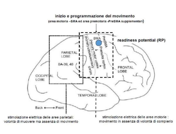 Fig. 2  vedi spiegazione nel testo ( Fig. tratta da  Clarke, 2013; mod.)