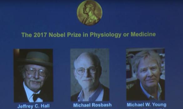 Nobel per la Medicina 2017: Hall, Roshbash e Young; per la Fisica a Weiss, Barish e Thorne