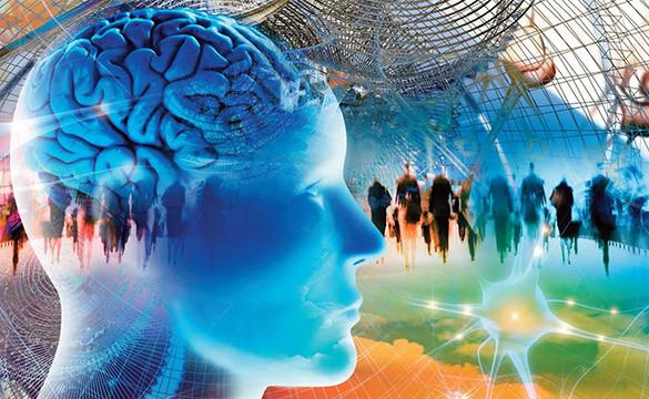 Il libero arbitrio e le neuroscienze. L'inquadramento scientifico