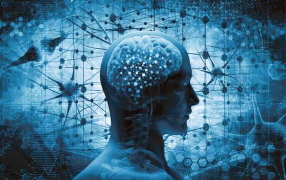 La Neurologia e la psichiatria si interfacciano con l'idea del trapianto di testa