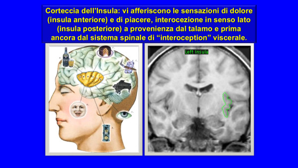 Fig. 2 Fenomenologia e neuroscienze dell'empatia_Ferraris ott 2019