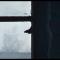 AnneFrank Vite parallele di Fedeli S 2019 banner